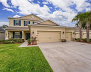 17510 Bright Wheat Drive, Lithia image