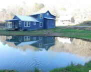 3778 Henry Town Rd, Sevierville image