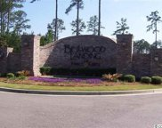 Lot 71 Whispering Pine Ct., Murrells Inlet image