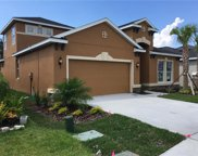 11182 Spring Point Circle, Riverview image