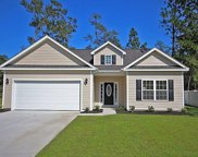 316 Pickney Ct, Conway image
