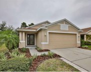 11583 Hammocks Glade Drive, Riverview image