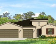 17928 Woodland View Drive, Lutz image
