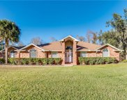 12105 Gray Birch Circle, Orlando image