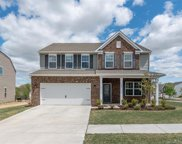 104  Rainbow Trout Trail, Fort Mill image