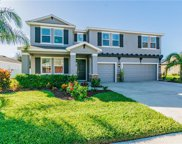 11846 Newberry Grove Loop, Riverview image