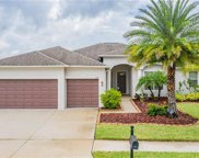 9671 Orange Jasmine Way, Tampa image
