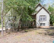 133 Cameron Dr, Chelsea image