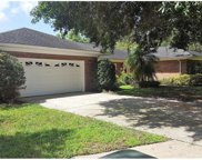4224 Meadow Hill Drive, Tampa image