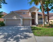 10217 Deercliff Drive, Tampa image
