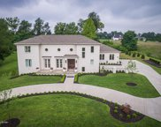 11318 Spring Hollow Ct, Prospect image