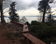 10807 Seaview Dr, Anderson Island image