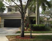 1145 Golden Cane Dr, Weston image