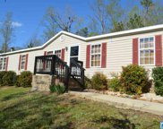 799 Pleasant Hills Rd, Odenville image