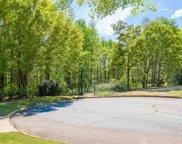 Peters Creek Court, Simpsonville image