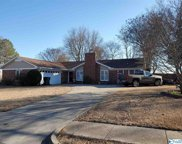 104 Lineberry Circle, Meridianville image