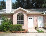 2491 Nugget, Tallahassee image