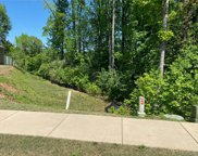 1516 Spring Blossom  Trail Unit #45, Fort Mill image
