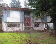 11724 209 Street, Maple Ridge image