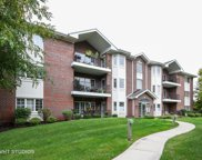 13079 Laurel Glen Court Unit 203, Palos Heights image