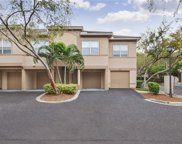 858 Normandy Trace Road Unit 858, Tampa image