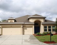 9142 Creedmoor Lane, New Port Richey image