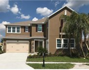 12545 Lillyreed Court, Trinity image