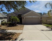 13716 Sigler Street, Riverview image