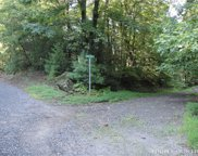 Lot 126 Buck Mountain Road, Purlear image