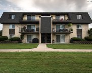 11135 South 84Th Avenue Unit 3A, Palos Hills image
