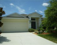 435 Painted Leaf Drive, Brooksville image
