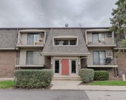 144 East Bailey Road Unit M, Naperville image
