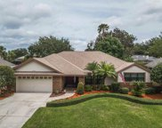 7824 Pointview Circle, Orlando image