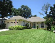 1061 Cottonwood Court, Apopka image