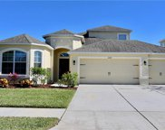 20139 Oakflower Avenue, Tampa image