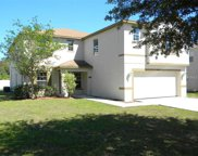 10620 Bamboo Rod Circle, Riverview image