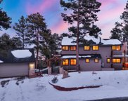 1184 Snowberry Drive, Golden image