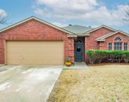 1212 Lake Haven Drive, Little Elm image