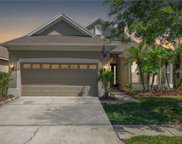 9510 Greenpointe Drive, Tampa image