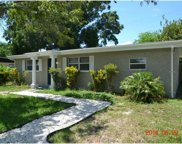 2905 Clifford Sample Drive, Tampa image