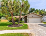 11916 Steppingstone Boulevard, Tampa image