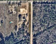 15942 Chaney Rd, Zachary image