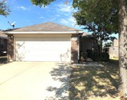 11905 Brown Fox Drive, Fort Worth image