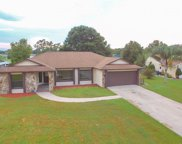 2969 Carrot Wood Court, Kissimmee image