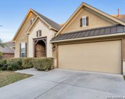 17816 Oxford Mt, Helotes image