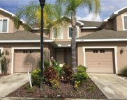 10321 Willow Leaf Trail, Tampa image