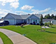 1233 Dunraven Court, Conway image