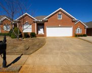203 Redspire Drive, Greenville image