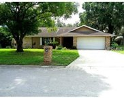 1105 Classic Drive, Valrico image