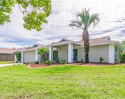 1612 Featherband Drive, Valrico image